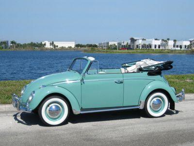 Garbus - VW typ 1