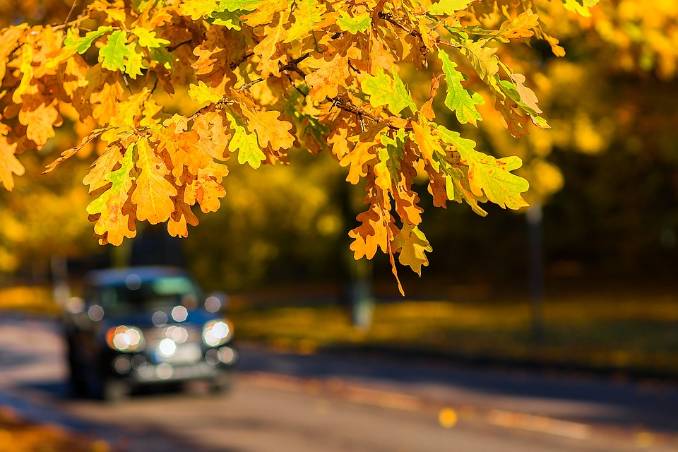 Październik najniebezpieczniejszym miesiącem na drogach