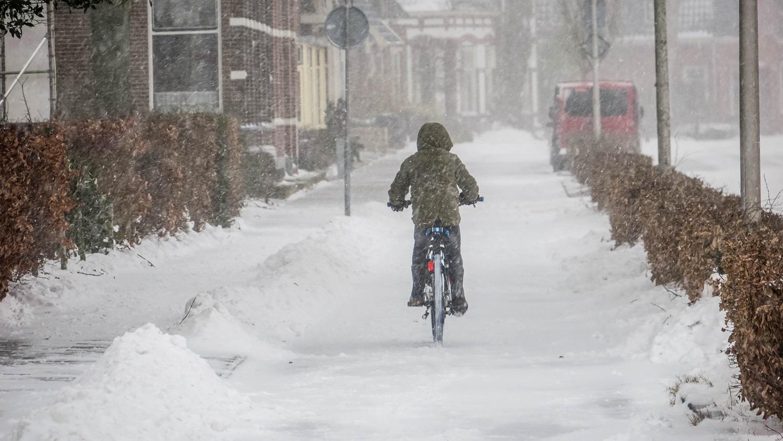 grzechy rowerzystów
