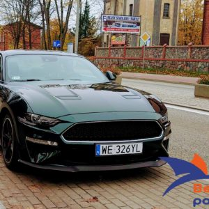 Ford Mustang 5.0 V8 GT 002
